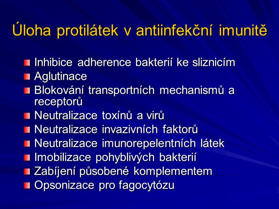 Úloha protilátek v antiinfekční imunitě