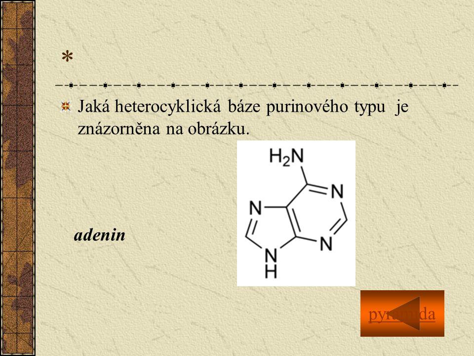 * Jaká heterocyklická báze purinového typu je znázorněna na obrázku.