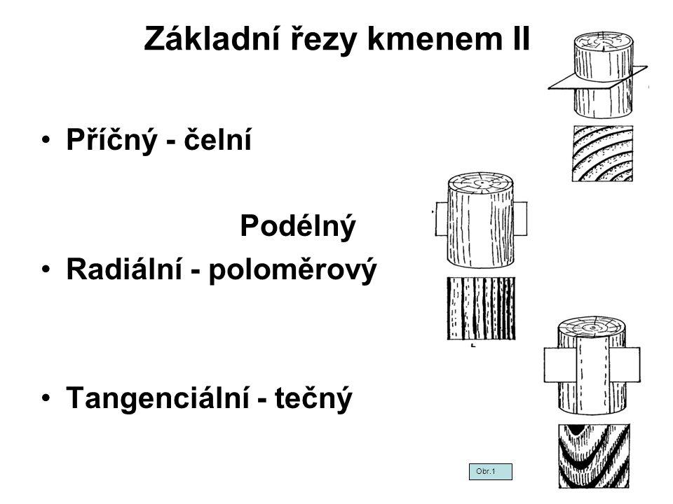 Základní řezy kmenem II