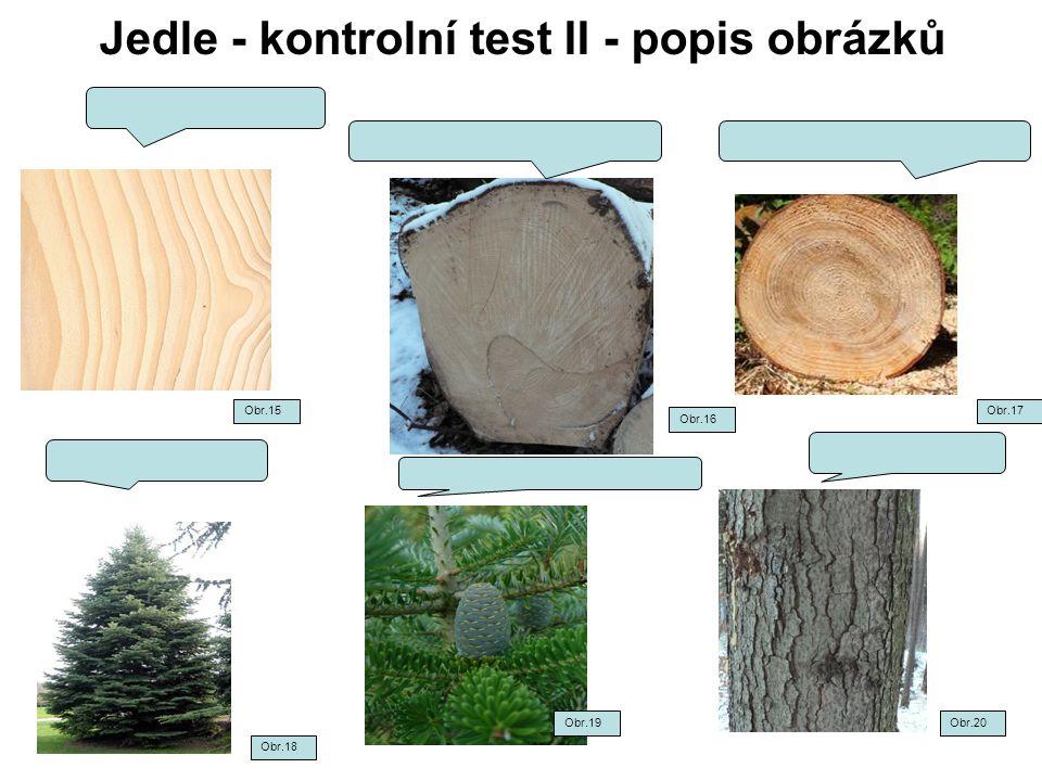 Jedle - kontrolní test II - popis obrázků