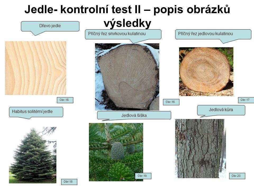 Jedle- kontrolní test II – popis obrázků výsledky