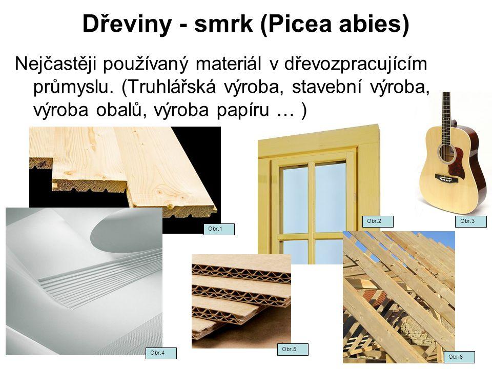 Dřeviny - smrk (Picea abies)