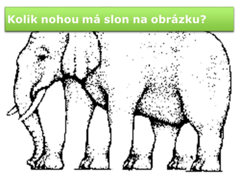 Kolik nohou má slon na obrázku