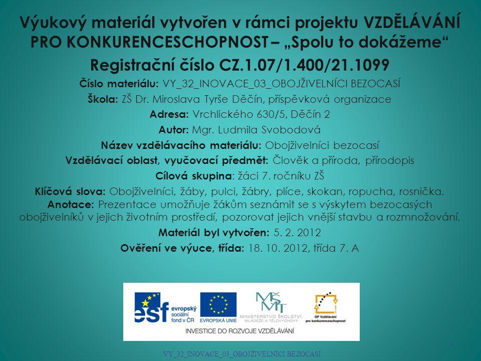 Registrační číslo CZ.1.07/1.400/21.1099