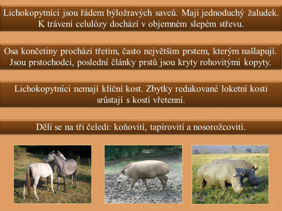 Dělí se na tři čeledi: koňovití, tapírovití a nosorožcovití.