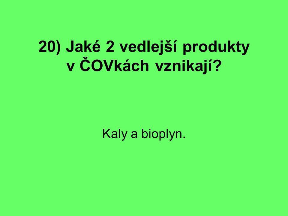 20) Jaké 2 vedlejší produkty v ČOVkách vznikají