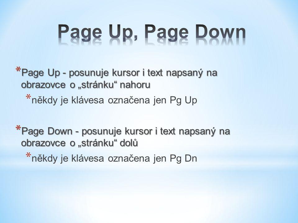 """Page Up, Page Down Page Up - posunuje kursor i text napsaný na obrazovce o """"stránku nahoru. někdy je klávesa označena jen Pg Up."""