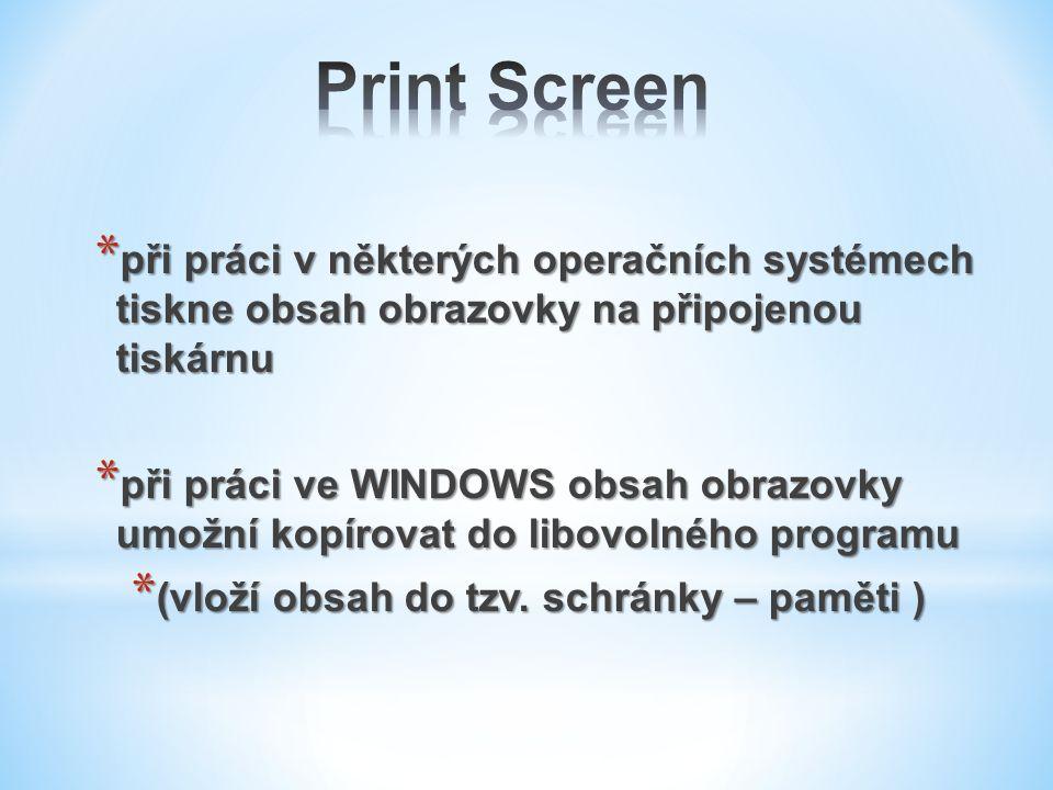 Print Screen při práci v některých operačních systémech tiskne obsah obrazovky na připojenou tiskárnu.