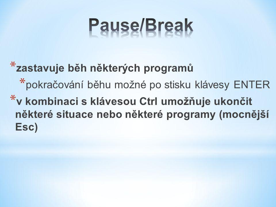 Pause/Break zastavuje běh některých programů
