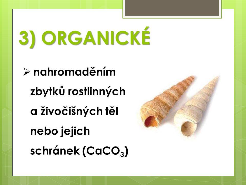 3) ORGANICKÉ nahromaděním zbytků rostlinných a živočišných těl nebo jejich schránek (CaCO3)