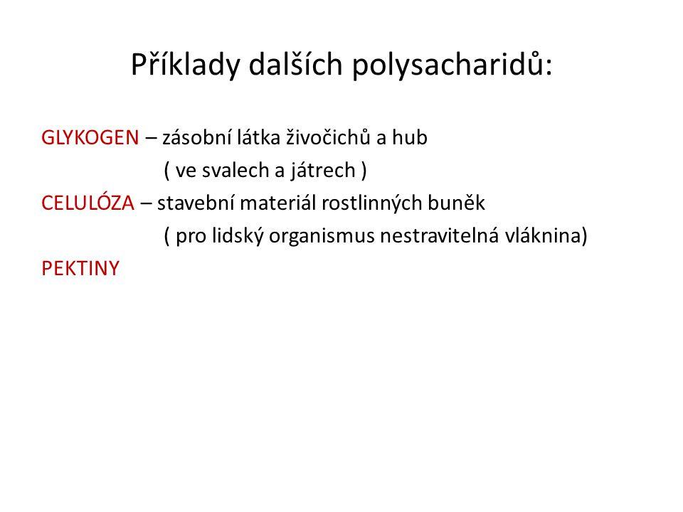 Příklady dalších polysacharidů: