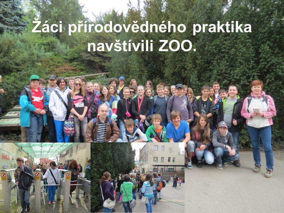 Žáci přírodovědného praktika navštívili ZOO.