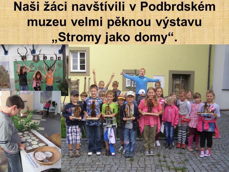 """Naši žáci navštívili v Podbrdském muzeu velmi pěknou výstavu """"Stromy jako domy ."""