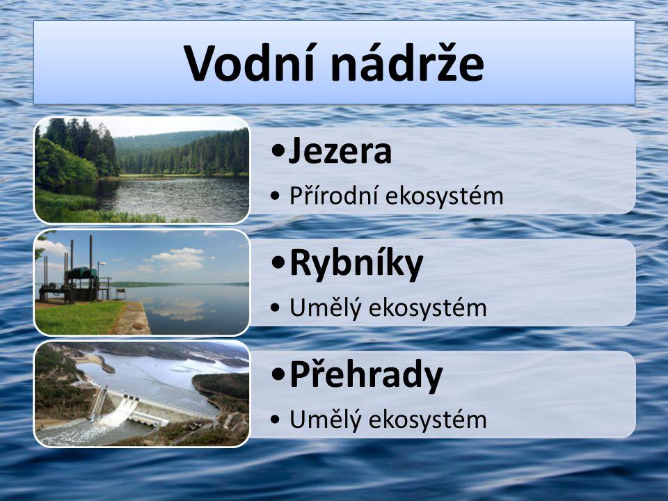 Vodní nádrže Jezera Rybníky Přehrady Umělý ekosystém