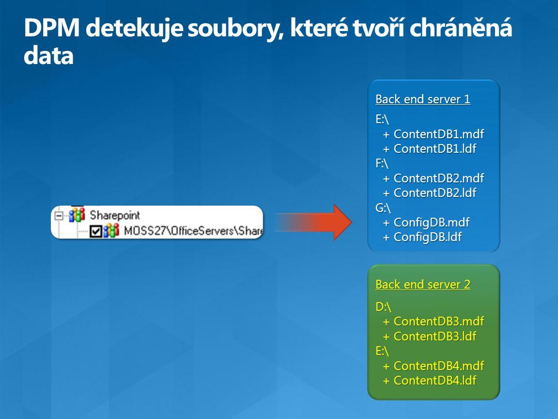 DPM detekuje soubory, které tvoří chráněná data