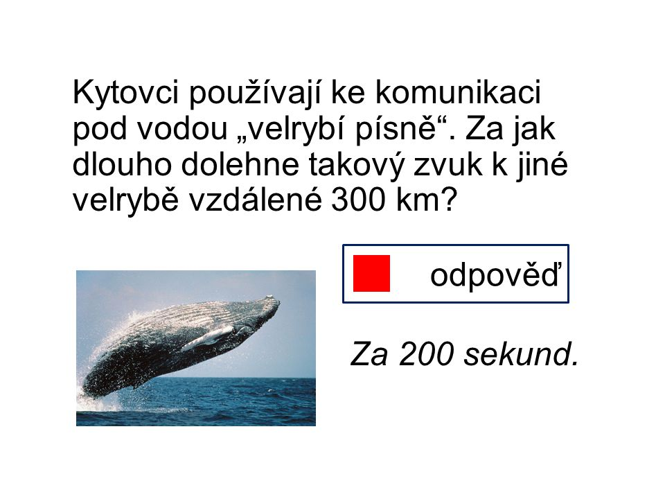 """Kytovci používají ke komunikaci pod vodou """"velrybí písně"""