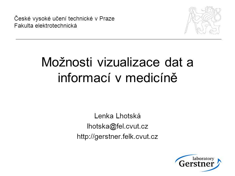 Možnosti vizualizace dat a informací v medicíně