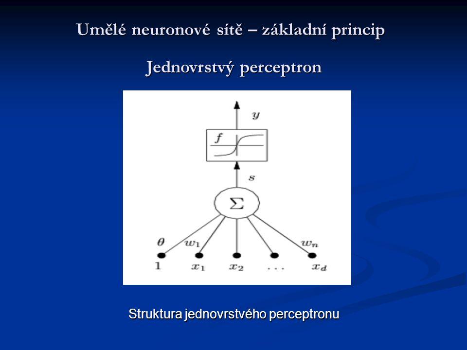 Umělé neuronové sítě – základní princip
