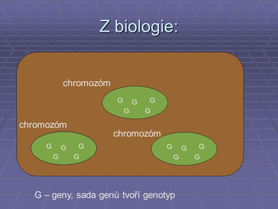 Z biologie: chromozóm chromozóm chromozóm