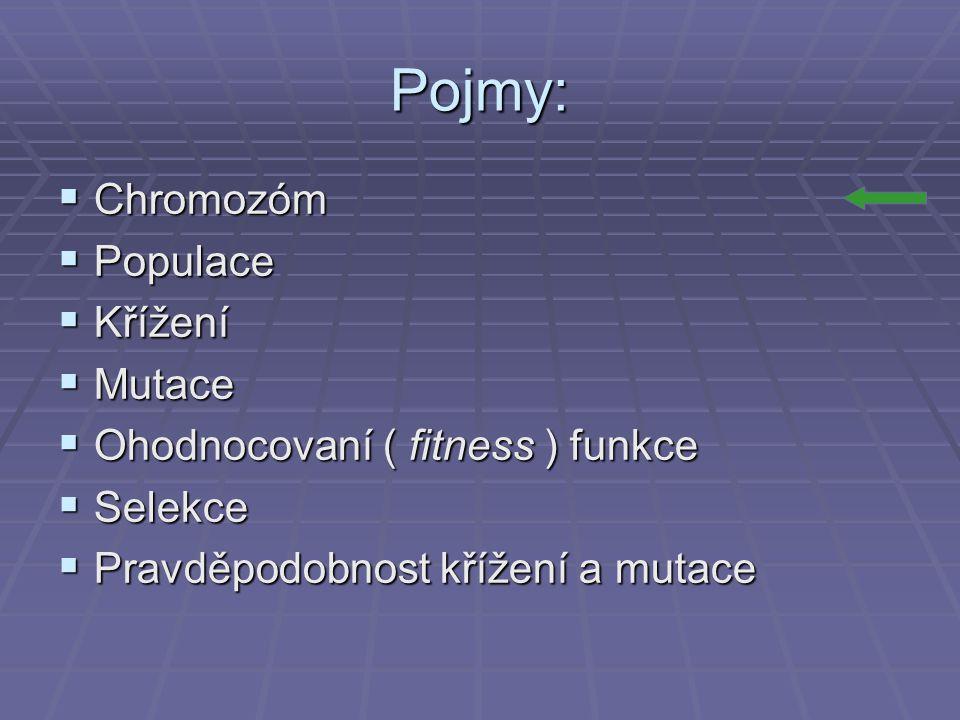 Pojmy: Chromozóm Populace Křížení Mutace