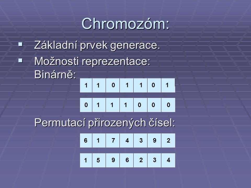 Chromozóm: Základní prvek generace. Možnosti reprezentace: Binárně: