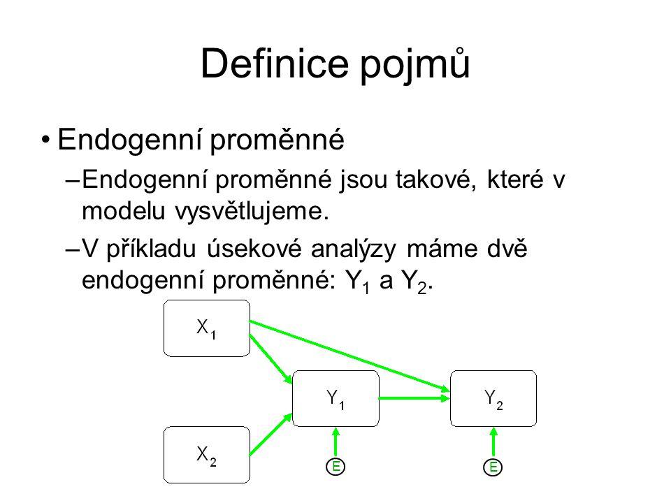 Definice pojmů Endogenní proměnné
