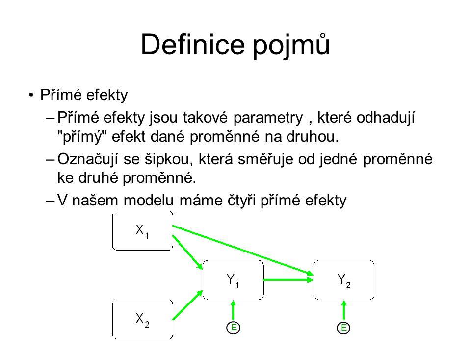 Definice pojmů Přímé efekty