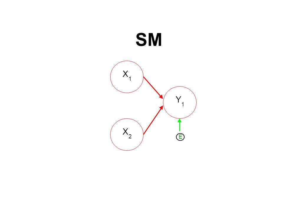 SM X 1 Y 1 X 2 E