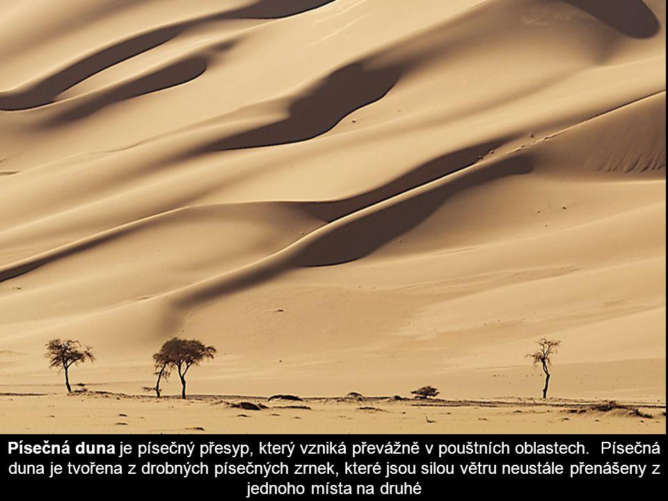 Písečná duna je písečný přesyp, který vzniká převážně v pouštních oblastech.