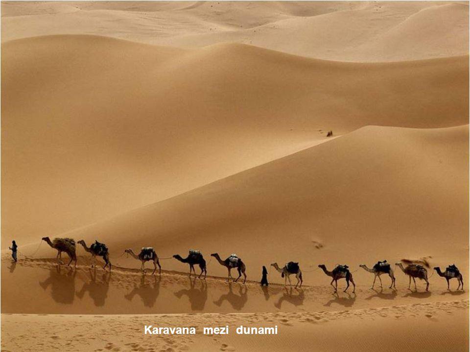 Karavana mezi dunami