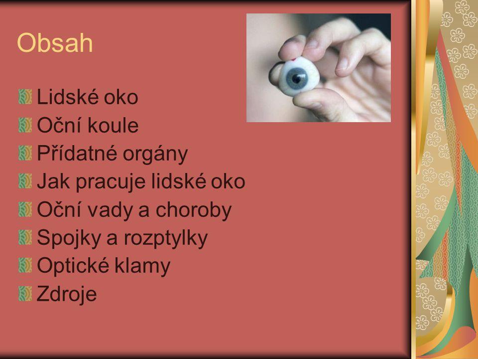 Obsah Lidské oko Oční koule Přídatné orgány Jak pracuje lidské oko