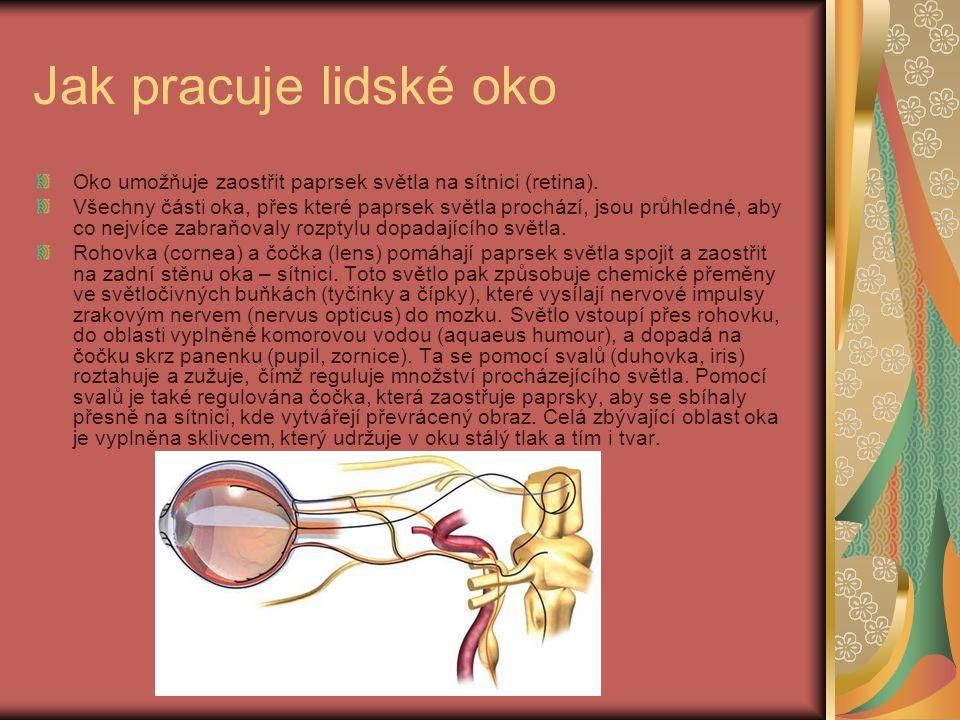 Jak pracuje lidské oko Oko umožňuje zaostřit paprsek světla na sítnici (retina).