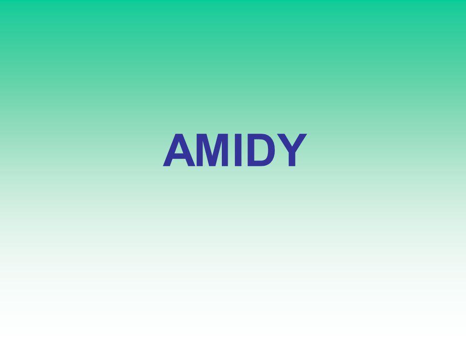 AMIDY