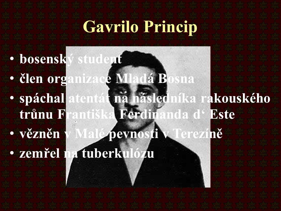 Gavrilo Princip bosenský student člen organizace Mladá Bosna