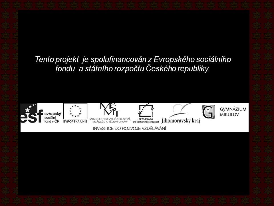 Tento projekt je spolufinancován z Evropského sociálního fondu a státního rozpočtu Českého republiky.
