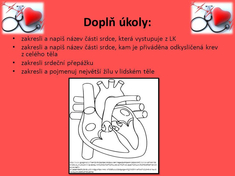 Doplň úkoly: zakresli a napiš název části srdce, která vystupuje z LK