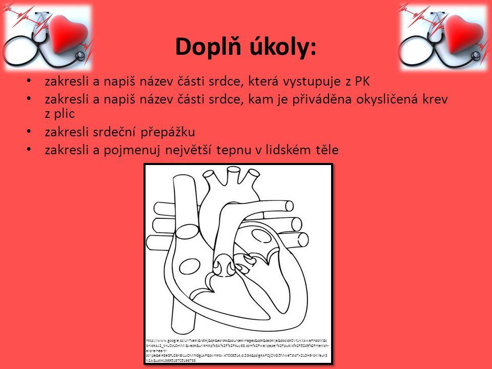 Doplň úkoly: zakresli a napiš název části srdce, která vystupuje z PK