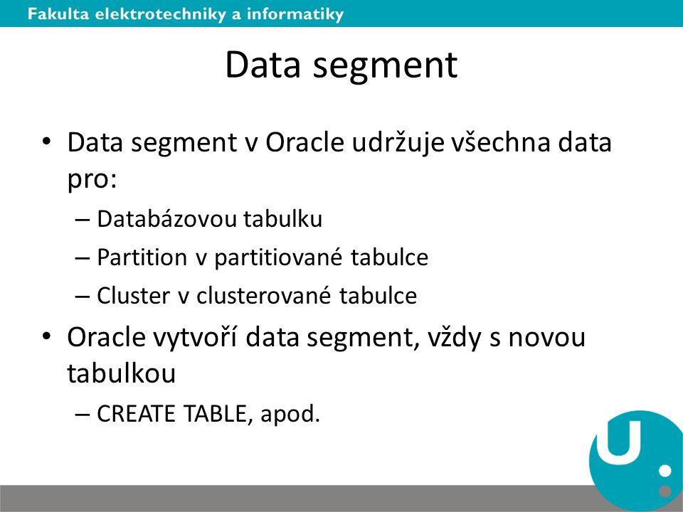 Data segment Data segment v Oracle udržuje všechna data pro: