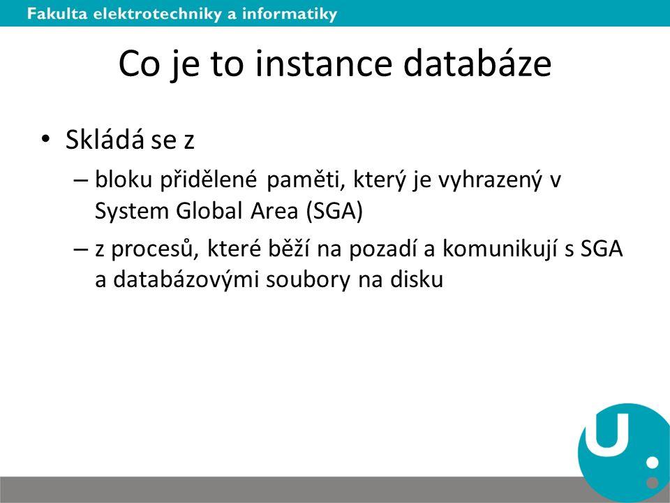 Co je to instance databáze