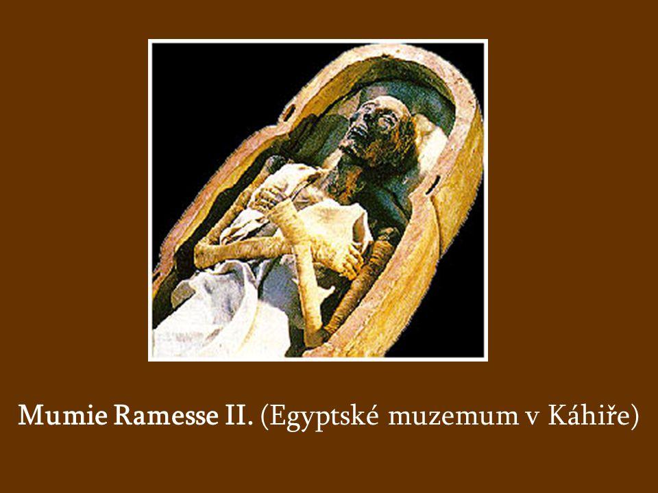 Mumie Ramesse II. (Egyptské muzemum v Káhiře)