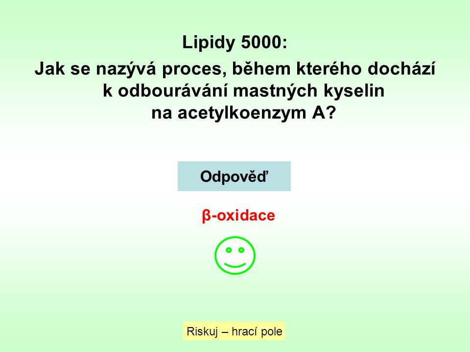 Lipidy 5000: Jak se nazývá proces, během kterého dochází k odbourávání mastných kyselin na acetylkoenzym A