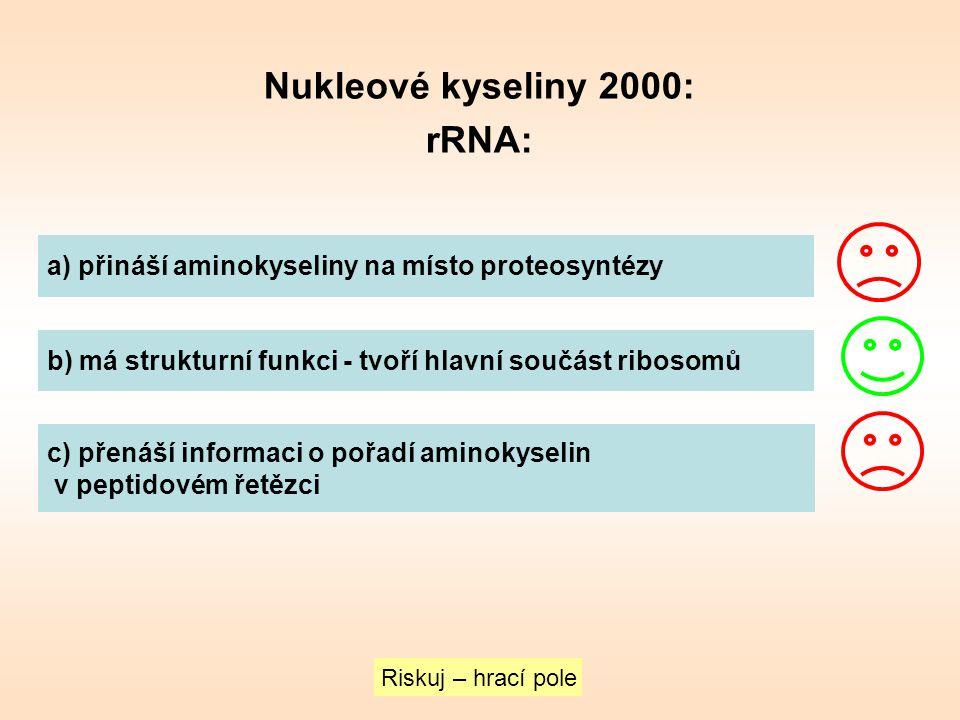 Nukleové kyseliny 2000: rRNA:
