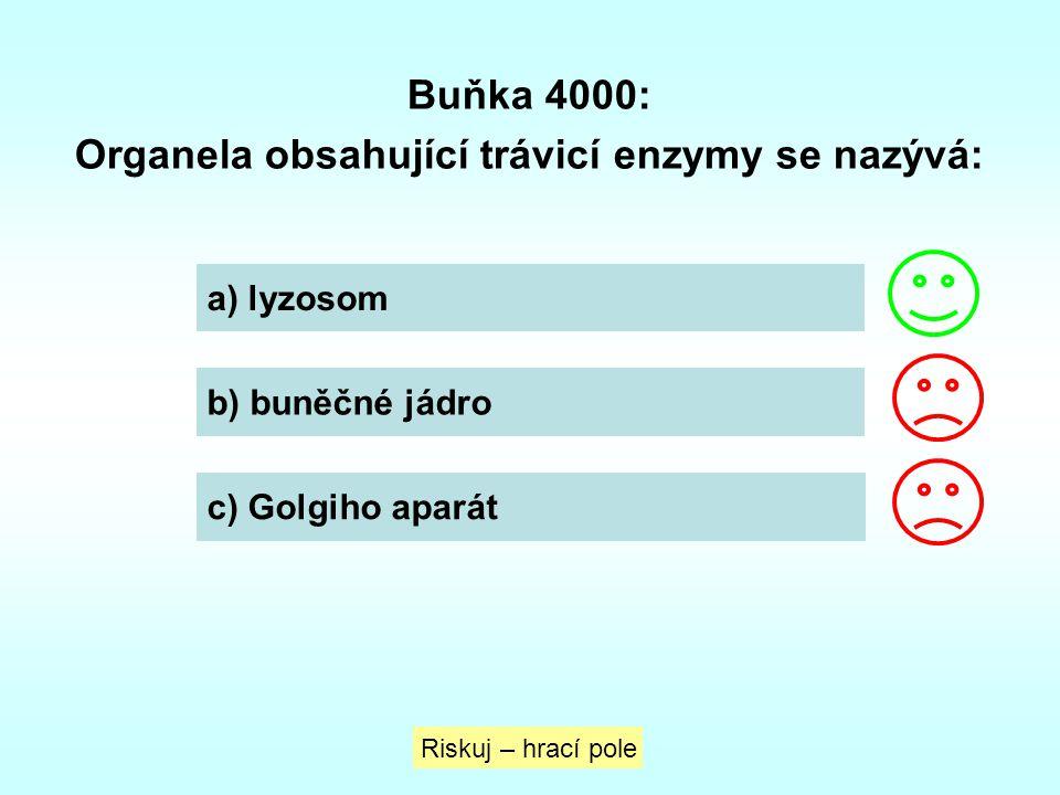Organela obsahující trávicí enzymy se nazývá: