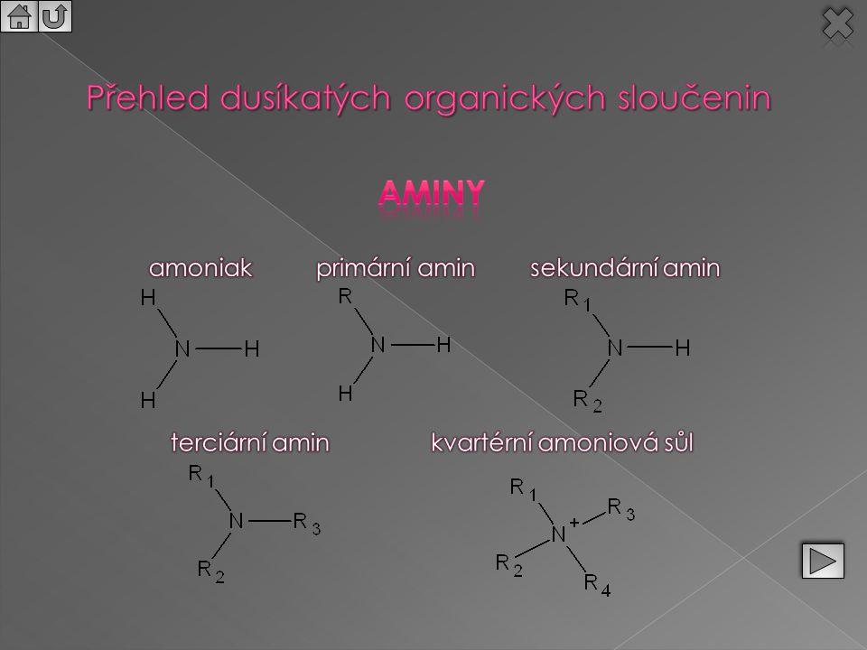 Přehled dusíkatých organických sloučenin