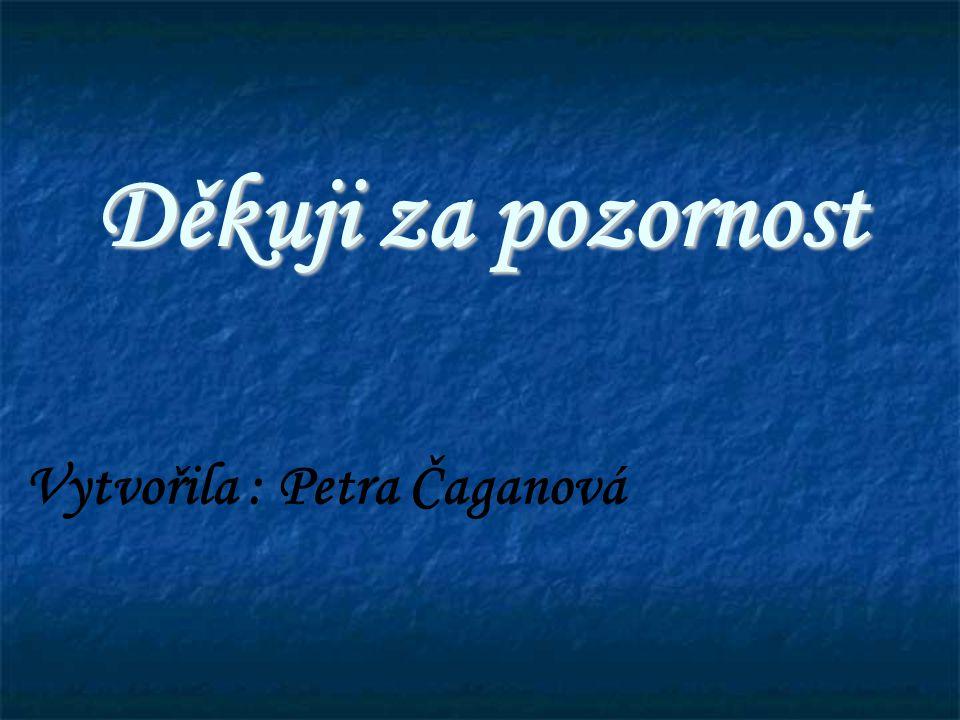 Děkuji za pozornost Vytvořila : Petra Čaganová