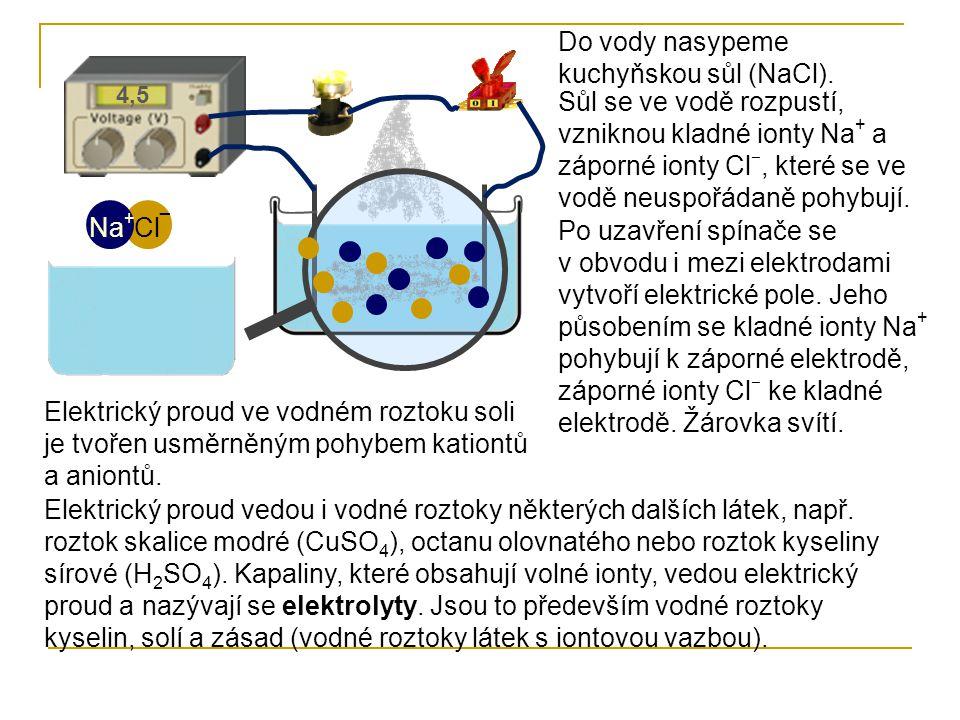 Do vody nasypeme kuchyňskou sůl (NaCl).