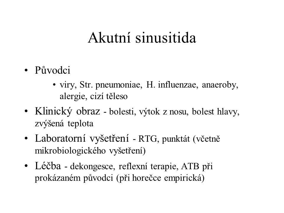 Akutní sinusitida Původci