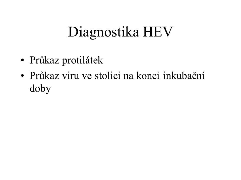 Diagnostika HEV Průkaz protilátek