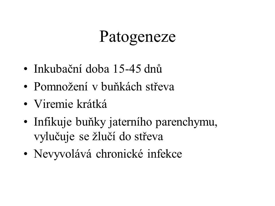 Patogeneze Inkubační doba 15-45 dnů Pomnožení v buňkách střeva