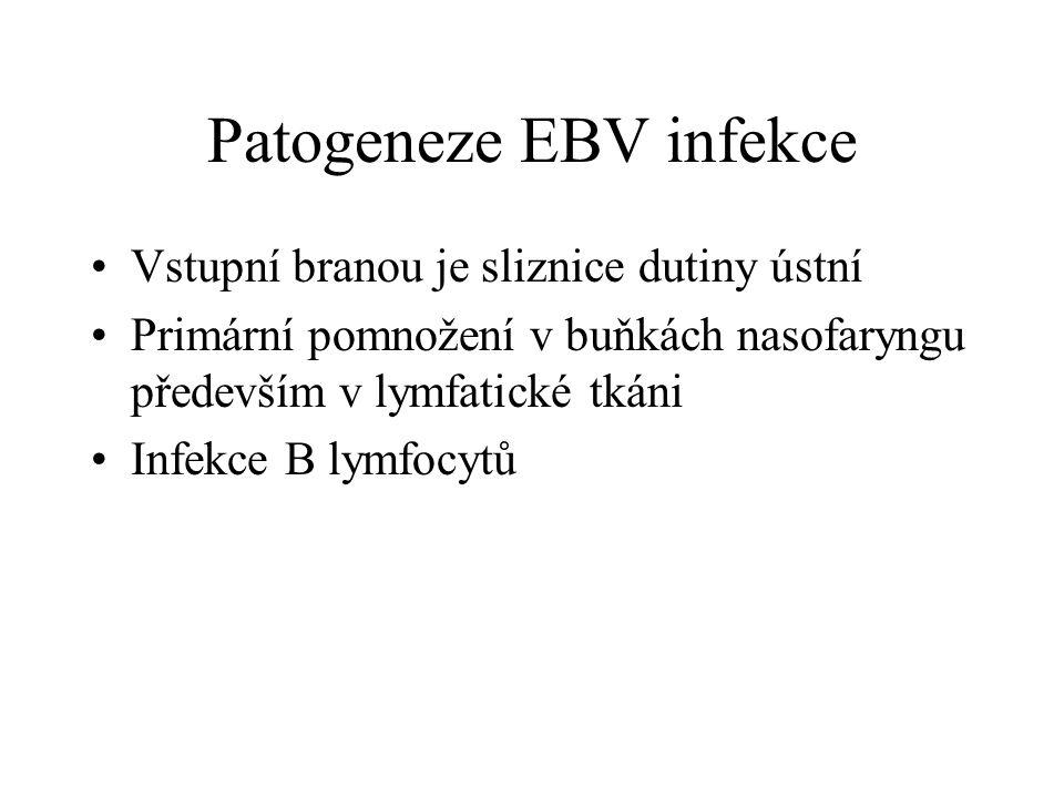 Patogeneze EBV infekce